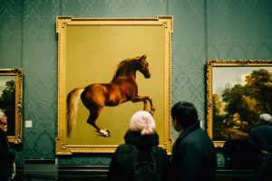 museums and art galleries in herefordshire